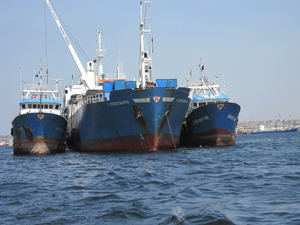 ALTUM ASSISTS TO FISHING SHIPOWNERS ON VESSELS OPERATING IN WEST AFRICA